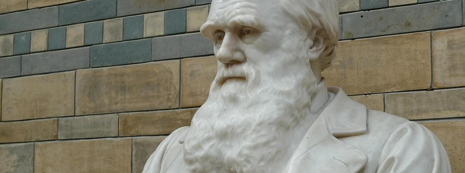 Charles Darwin Statue, Natural History Museum, London